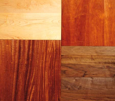 Hardwoods vs. Softwoods