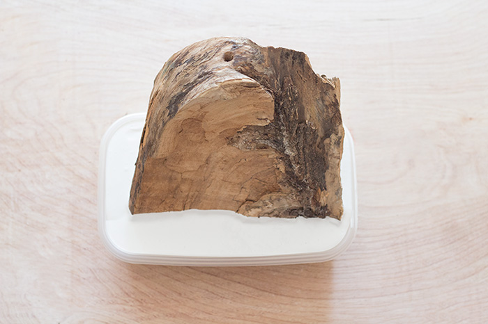 Wood in white paint